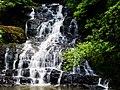 Elephant Falls (7158994883).jpg