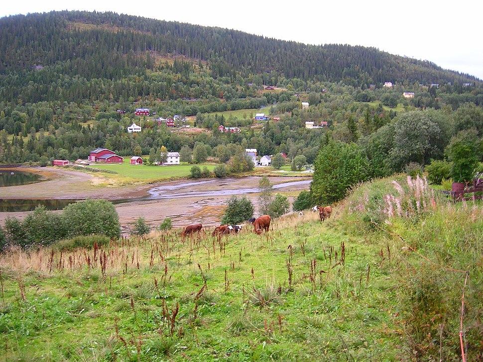 Elsfjord F