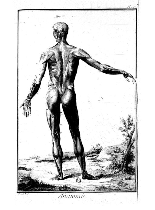 Encyclopedie volume 1-138