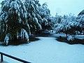 Erster Herbstschnee 2013, bei der AWO WOR - panoramio.jpg