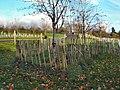 Ervey Country Park - geograph.org.uk - 610803.jpg
