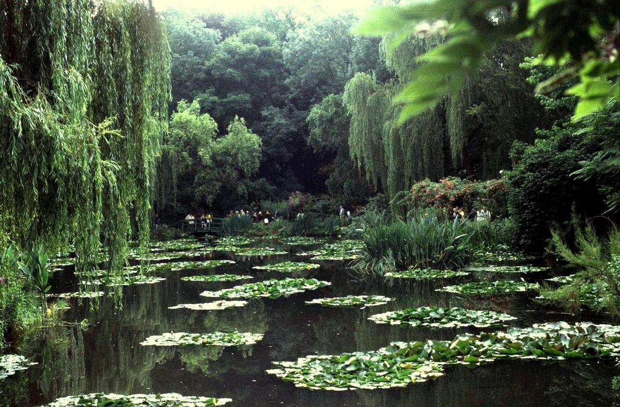 Eure Giverny Maison Monet Jardin Nymphea - panoramio.jpg