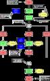 Exemple de Chaîne de Processus Evénementielle.png