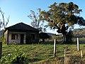Extinta escola do Vale dos Panos e árvore. Palma - Santa Maria, RS.JPG - panoramio.jpg