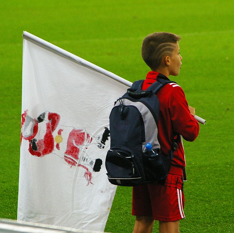 Image Result For Admira Gegen Red Bull Salzburg