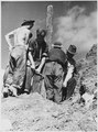 "FSA, CCC, ""CCC boys at work"", Prince George Co., V.A - NARA - 195829.tif"