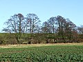 Farm Land by Spittle Brook, Staffordshire - geograph.org.uk - 680570.jpg