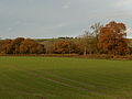 Farmland, East Stowell - geograph.org.uk - 282666.jpg