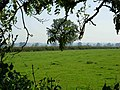 Farmland near Peatling Parva - geograph.org.uk - 236639.jpg