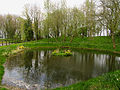 Farnborough Village Pond - geograph.org.uk - 5633.jpg