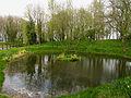 Farnborough Village Pond - geograph.org.uk - 5633.jpg