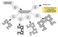 Fibonacci word fractal variants.png