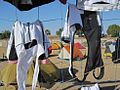 Flickr - Tour d'Afrique - shorts drying in Idfu.jpg