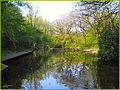 Flickr - ronsaunders47 - Birchwood Pond..jpg