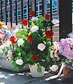 Flower bouquet red white - in memory of the victims 8jul05.jpg