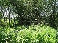 Footbridge and path junction at the SW corner of Rackham Plantation - geograph.org.uk - 1335749.jpg