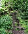 Footpath - Ben Rhydding Road - geograph.org.uk - 911306.jpg