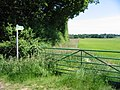 Footpath along field boundary in direction of Acrise Place - geograph.org.uk - 856500.jpg
