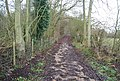 Footpath near Blean - geograph.org.uk - 1132425.jpg