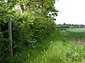 Footpath off Heveningham Long Lane - geograph.org.uk - 1316427.jpg