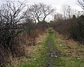 Footpath on the route of the Stockton to Darlington Railway - geograph.org.uk - 123119.jpg
