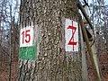 Footpath signs in Dresdner Heide 02.jpg