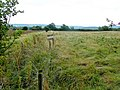 Footpath to Childswickham - geograph.org.uk - 1513892.jpg