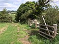 Footpath to Moretonhampstead - geograph.org.uk - 1467646.jpg