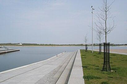 Sådan kommer du til Fuglsang Sø med offentlig transport – Om stedet