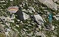 Fuorcla da Lavaz - eidgenössischer Jagdbann (cropped).jpg