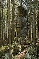 Góry Stołowe-Maczuga Herkulesa.JPG