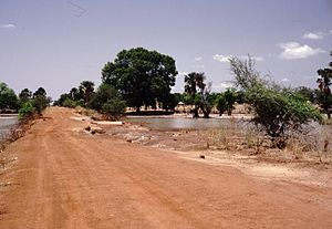 Gambia 110 from KG.jpg