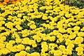 Garden in Braga 01.jpg