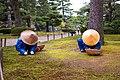 Gardeners in Kenroku-en Garden (31036456067).jpg