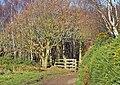 Gated Approach - geograph.org.uk - 669269.jpg