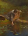 Gathering Lilies A12639.jpg