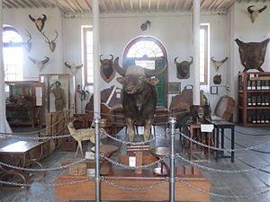 Gass Forest Museum - Image: Gauss museum Gaur