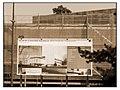 Geneve museum naturel 2011-08-02 13 07 01 PICT3628BW.JPG