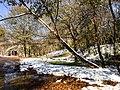 Georgia snow IMG 5092 (24082756517).jpg