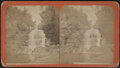 Gilboa Falls and Gorge, near Gilboa, N.Y, from Robert N. Dennis collection of stereoscopic views.png