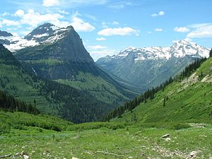 Valley - U-shaped valley in Glacier National Park, Montana, United States