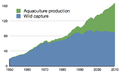 Global total fish harvest.png
