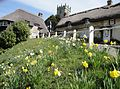 Godshill Church Hill cottages.JPG