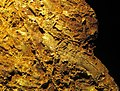 Gold vein stockwork in limonite (Gold Flake Vein, Farncomb Hill, near Breckenridge, Colorado, USA) 6 (16457082424).jpg