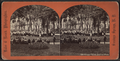 Grand Union Garden Party, from Robert N. Dennis collection of stereoscopic views.png