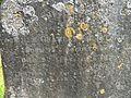 Gravestone inscription to Sir Charles Elliot.jpg