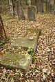 Gravestones at Jewish Cemetery in Dřevíkov, Chrudim District 53.JPG