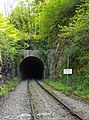Great Elm Tunnel, Whatley Quarry Quarry Branch Line. - panoramio.jpg