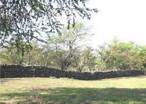 Kuakini - Portions of the Great Wall still exist around Kailua-Kona