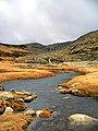 Gredos mountain stream-cesargp.jpg
